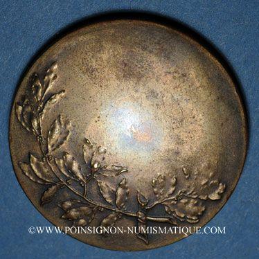 Coins Alsace. Strasbourg. La ville au 17e siècle. Médaille bronze. 35 mm