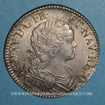 Coins Louis XV (1715-1774). Ecu de France-Navarre 1719 A