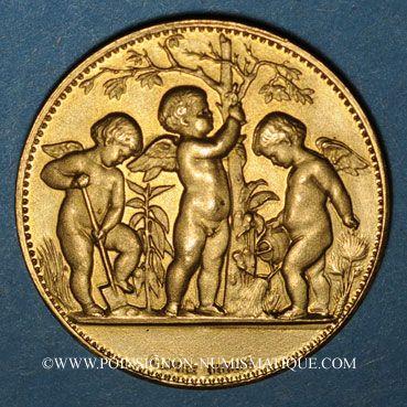 Monnaies Bas-Rhin. Société d'horticulture du Bas-Rhin. Médaille bronze doré. 28,21 mm