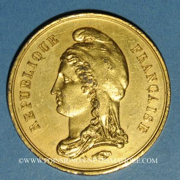 Monnaies Guerre de 1870-71. Souvenir de la guerre contre la Prusse. Etain doré. 46 mm