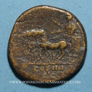 Monnaies Antonin le Pieux (138-161). Sesterce. Rome, 146. R/: Antonin dans un quadrige