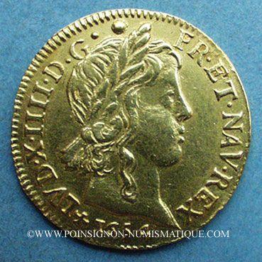 Monnaies Louis XIV (1643-1715). Louis d'or à la mèche longue 1654 T. Nantes. 653 ex !