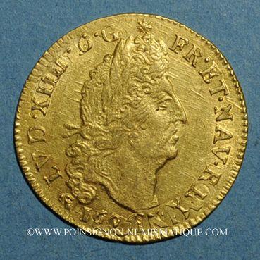 Monnaies Louis XIV (1643-1715). Louis d'or aux 4 L 169(?)D. Lyon. Réformation