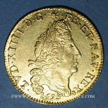 Monnaies Louis XIV (1643-1715). Louis d'or aux 4L 1695AA. Metz. Réformation