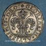Monnaies Alsace. Strasbourg (17e siècle). 1/2 taler aux lions