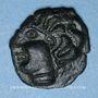 Monnaies Ambiani (région d'Amiens) (vers 60 - 30/25 av. J-C). Bronze à la grande rosace