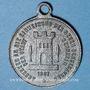 Coins Alsace. Cernay. Inauguration de la nouvelle école. 1887. Médaille étain. 28,7 mm