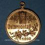 Coins Alsace. Colmar. Cortège historique. 1898. Médaille en laiton doré