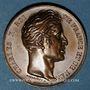 Coins Alsace. Colmar. Visite de Charles X. 1828. Médaille bronze. Gravée par Desboeufs et de Puymaurin