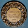 Coins Alsace. Hommage à Turenne - Bataille de Turckheim. 1675 (vers 1932). Médaille bronze. 41,05 mm
