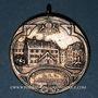 Coins Alsace. Mulhouse. Concours cantonal de tir. 1913. Médaille argent. 34,43 mm