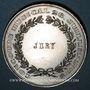 Coins Alsace. Mulhouse. Concours musical. 1885. Médaille en étain. 50 mm
