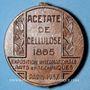Coins Alsace. Mulhouse. Expo. Int. Arts & Techniques Paris 1937 P. Schutzenberger. Médaille acétate 39,4mm