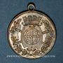 Coins Alsace. Mulhouse. Journée des Pompiers du Haut-Rhin. 1893. Médaille aiton avec argenture partielle