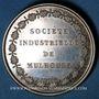 Coins Alsace. Mulhouse. Société Industrielle. Médaille en argent. 41 mm