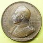 Coins Alsace. Souvenir des combats de Mulhouse. 1914. Médaille en bronze. 33,5 mm