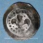 Coins Alsace. Strasbourg (14e siècle). Pfennig au lis