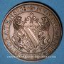 Coins Alsace. Strasbourg. Centenaire de la Société philatélique Union 1877. 1977. Médaille bronze. 42 mm