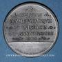 Coins Alsace. Strasbourg. Cercle Numismatique d'Alsace. 4e anniversaire. 1930. Médaille étain. 45 mm
