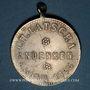 Coins Alsace. Strasbourg. Ch. Latscha. 1895. Médaille laiton. 28,48 mm