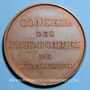 Coins Alsace. Strasbourg. Conseil des Prud'hommes. Médaille bronze. 33 mm