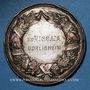 Coins Alsace. Strasbourg. Exposition agricole. 1881. Médaille cuivre argenté. 50,9 mm. Gravée par W. Mayer