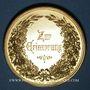 Coins Alsace. Strasbourg. Exposition agricole. 1881. Médaille cuivre doré. 50,9 mm. Gravée par W. Mayer