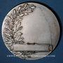 Coins Alsace. Strasbourg. Exposition d'hygiène. 1935. Médaille bronze argenté. 49 mm