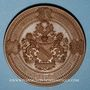 Coins Alsace. Strasbourg. Exposition Industrielle. 1895. Médaille cuivre. 68 mm