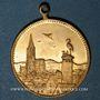 Coins Alsace. Strasbourg. Exposition Industrielle. 1895. Médaille laiton. 28 mm