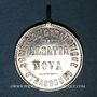 Coins Alsace. Strasbourg. Fête donnée par la société de gymnastique Alsatia Nova. 1884. Zinc nickelé