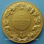 Coins Alsace. Strasbourg. Foire de Strasbourg-campagne. 1919. Médaille bronze doré. 50,4 mm