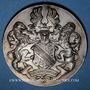 Coins Alsace. Strasbourg. Foire-exposition. 1929. Médaille bronze argenté. 49,4 mm. Gravée par Ch. Müller