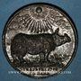 Coins Alsace. Strasbourg. Le rhinocéros à Strasbourg. 1748. Médaille étain. 39,37mm. Gravée par J. D. Kamm
