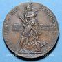 Coins Alsace. Strasbourg. Ligue des Patriotes (Paris). 1882. Médaille bronze. 22,8 mm. Gravée par Dubois