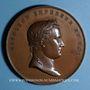 Coins Alsace. Strasbourg. Paix de Vienne. 1809. Médaille bronze