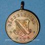 Coins Alsace. Strasbourg. Société nautique Gänselspiel Club. 15-8-1886. Médaille laiton. 24,6 mm