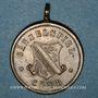 Coins Alsace. Strasbourg. Société nautique Gänselspiel Club. 18-7-1886. Médaille. Laiton. 25 mm