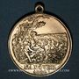 Coins Alsace. Strasbourg. Visite de Guillaume I – Manœuvres. 1886. Médaille laiton doré. 33,40 mm