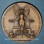 Coins Alsace. Wissembourg. Monument aux morts pour les soldats français. 1909. Médaille bronze