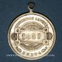 Coins Colmar. Cortège historique. 1889. Médaille laiton argenté. 29,3 mm
