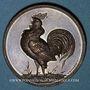 Coins Colmar. (Exposition avicole). 1885. Médaille cuivre. 39,2 mm. Gravée par W. Mayer de Stuttgart