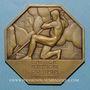 Coins Kembs. Inauguration de la centrale hydro-électrique du Rhin. 1938. Plaquette octogonale. Bronze