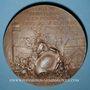 Coins Mulhouse. 100e anniversaire de la réunion à la France. 1898