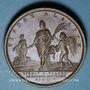 Coins Passage du Rhin. 1744. Médaille cuivre. 41 mm. Gravée par F. Marteau