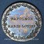 Coins Strasbourg. Entrée de l'impératrice en France. 1810. Médaille argent