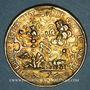 Coins Strasbourg. Médaille 1628. Argent doré. 26 mm. Gravée par F. Fecher