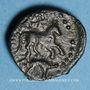 Coins Carnutes. Région de Chartres. Bronze au cheval /sanglier, 1er s. av. J-C. DT 2606 cet exemplaire !