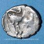 Coins Cavares. Drachme au bouquetin de la classe III, Avignon