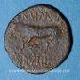 Coins Trévires. Région de Trèves - Germanus Indutilli L. Bronze, 30 av.  - 10 ap. J-C